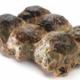 Salaisons Guèze. Caillette ardéchoise aux herbes