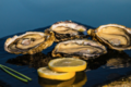 Huîtres Gaboriau Frères. Huîtres Spéciales N°2