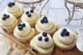 Biscuit roulé cassis & myrtille et chantilly