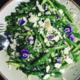 Petites pointes d'asperges vertes en salade