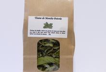 Tisane de menthe poivrée