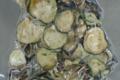 La ferme de Saint-André. Chips d'aubergine courgette