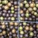 Chocolat Noisette. billes soufflées chocolatées