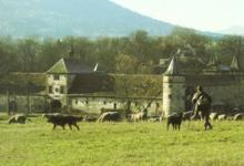 Ferme Maier. GAEC de L'Eichmatt