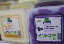 Ferme Humbert. Glace yaourt myrtille