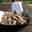 Réservation des bulbes ou bulbilles