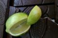 Les Suprêmes, chocolaterie artisanale. Noir écorces de citron