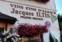 Jacques Iltis Et Fils
