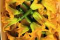 Maison Argentain. fleur de courgette