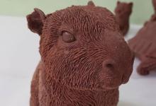 Chocolat Illèné