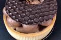 Bruno Cordier. Tarte et tartelette  Poire badiane chocolat
