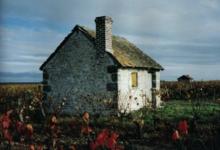 Domaine De La Gaudetterie. Patrice Colin