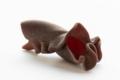 Les gourmandes bio. Maguy chocolat