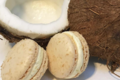 Chocolaterie Bellanger. Macaron noix de coco