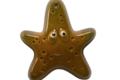 Chocolaterie Bellanger. Etoile de mer