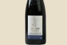 Domaine de la Bessière. Saumur – Champigny XL de la Bessière