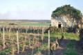 Domaine Legrand