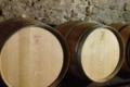 Domaines des Galmoises. Vignoble Pasquier