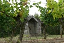 Domaine Prieur