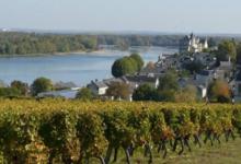Domaine Bruneau