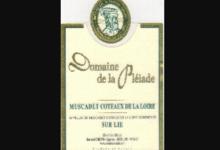 Domaine De La Pléiade. Muscadet Coteaux de la Loire   sur lie