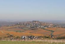 Domaine Millet. Scea du Briou
