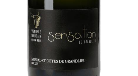 Muscadet Côtes de Grandlieu Sur Lie AOP – SENSATION DE GRANDLIEU