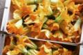 Le Cayre de Valjancelle. Fleur de courgette