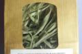 Plantbiorel. Sauge feuilles