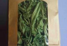 Plantbiorel. Verveine odorante
