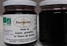 Plantbiorel. Gelée de cassis, groseilles et fleurs de sureau