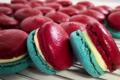 Sacrées Pâtisseries de Zoé Petit. Macaron tricolore