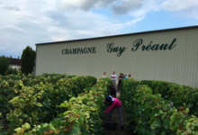 Champagne Guy Preaut