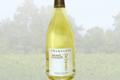 Champagne Michel Furdyna. La Romane