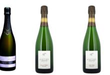 Champagne Piollot. Cuvée Champs rayés