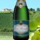 Champagne Olivier Lassaigne. Tradition brut