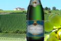 Champagne Olivier Lassaigne. Tradition demi-sec