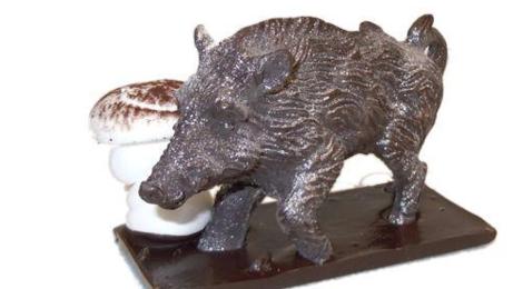 Sylvain Mussy. Maître artisan chocolatier. Marcassin