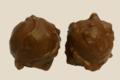 Chocogil. Rochers au chocolat lait fourrés praliné