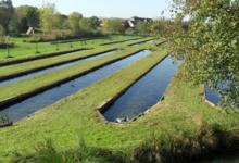 La Pisciculture La Belle Fontaine