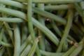 Jardin du poirier. Haricots verts