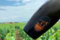 Champagne De Sousa, Extra Brut Grand Cru Mycorhize