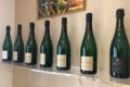 Champagne Agrapart. Complantée