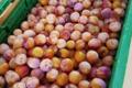 Légumes de Montsaon. Mirabelles
