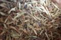 Les Herbes Folles. Morphée