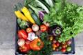 Primaflor. Panier de légumes