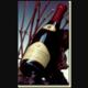 Champagne Guy Larmandier. Vertus rouge