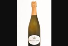 Champagne Larmandier Bernier. Terre de Vertus