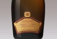 champagne Tanneux-Mahy. Cuvée fût de chêne