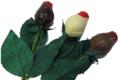 Chocolaterie Stéphane Lothaire. Bouquet de 3 roses en Chocolat